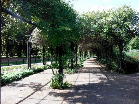 Leafy terraces, as seen in Hyde Park
